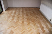 New Maple Parquet